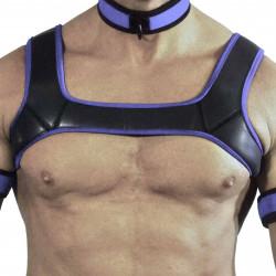 RudeRider Neoprene Harness Black/Purple (T7301)